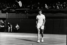 Dennis Ralston Tennis Player On Court During Wimbledon Singles Championship While Throwing His Racquet Away In Disgust 1966.