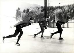 Bobsledding / Skating / Skiing ----- Figure Skating / Ice Skating / Roller Derby / Slalom
