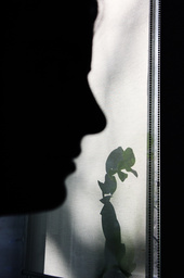Girls silhouette and orchid