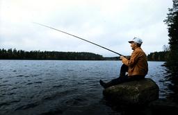 Fiske.