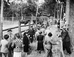 Participants in a conference visit the bison in Karinhall, 1938