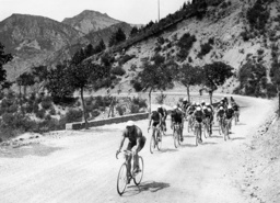 Felicien Vervaecke and the field in the mountains in the Tour de France, 1936