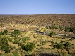 Olifants River running through veldt landscape, seen from Olifants Camp, Kruger National Park, Transvaal, South Africa, September.
