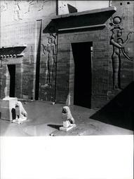 Africa / Egypt