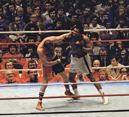 Muhammad Ali, Chuck Wepner