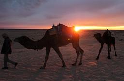 TUNISIA-TOURISM-SAHARA-FESTIVAL-DOUZ