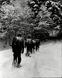 Raf Winter Survival School In Bavaria. Raf Are Seen Arriving At The Rendezvous Point After A Cross Country March Of 30km Carried Out At Night.