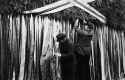 Vorbereitungen zum 1.Mai/Maibaum... - Labour Day, Maypole / Photo / 1938 -