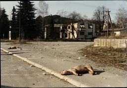 Yugoslavia Civil War Ruined Buildings After The Massacre In Vocin