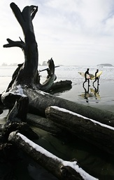 Surfers pass snow-dusted driftwood on western Vancouver Island's Chesterman Beach