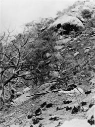 Askari-Stellung am Kilimandscharo - Askari position on Kilimanjaro - Position askari au Kilimandjaro