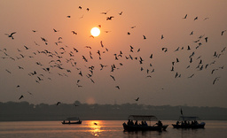 People travel in boats as sun sets for last time in 2008 in Allahabad