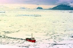 GREENPEACE SHIP PLOWS THROUGH ANTARCTIC ICE