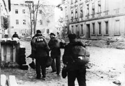 German National Militia in Silesia, 1945