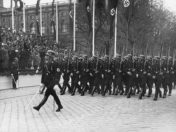 Parade of the service troops