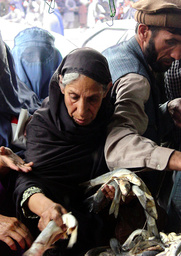 AFGAHN WOMAN IN KABUL PURCHASES FISH FOR NOWRUZ THE NEW YEARS FESTIVAL