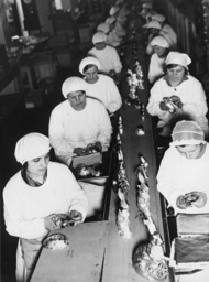 Osterhasenproduktion 1934 - Easter Bunny Production / Photo / 1934 -