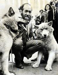 Sir Wally Herbert (died June 2007) Polar Explorer And Huskies Apple Dog (l) And Eskimo Nell (r). Walter Herbert