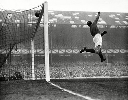 Goalkeeper Jack Crompton In Action For Manchester United.