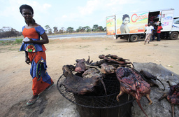A woman walks past dried bushmeat near a road of the Yamoussoukro highway
