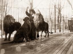 Tilly Bebe, 1909
