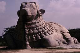 Lepakshi, Nandi-Statue / Foto - Lepakshi, Nandi Statue / Photo -