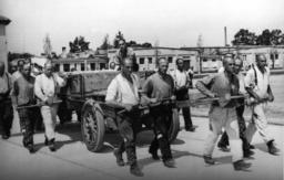 Konzentrationslager Dachau/ Häftlinge - Prisoners pulling trailer / Dachau -