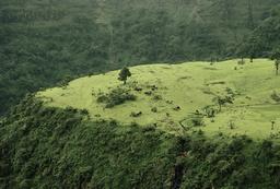 Maharashtra, Ländliche Szene / Foto - Maharashtra, rural scene / Photo - Maharashtra (Inde) / Région de Khandava.