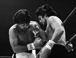 Associated Press Sports United States DURAN V PALOMINO 1979