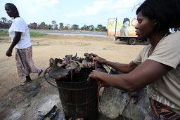 A woman dries bushmeat near a road of the Yamoussoukro highway