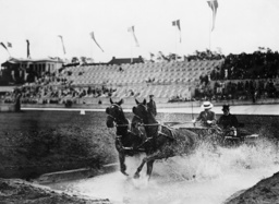 Concours Hippique:Dame im Zweispänner - Horse Show / Woman drives carriage -