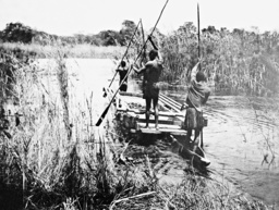 Boat on the Linyanti, 1911