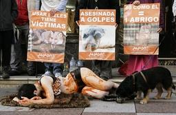 A dog sniffs an anti-fur demonstrator in Oviedo