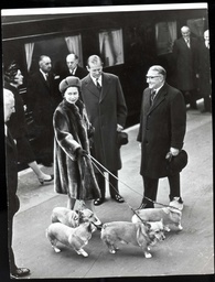 Queen Elizabeth. Dogs. Picture Shows The Queen And Prince Philip Arriving At Liverpool Street Station In London With The Corgis.