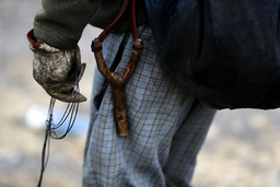 Rabbit hunter Orlando carries a slingshot early in the morning to check his traps in the countryside near Santiago city