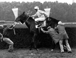 Galopper Orofino läßt sich durch Jockey Peter Alafi und weitere drei...