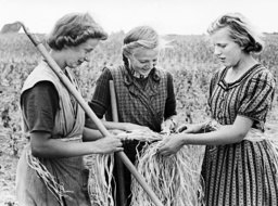 Girls complete country year, 1939