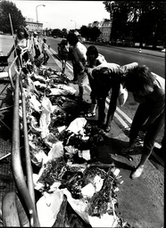 Visitors In Hyde Park Looking At The Decaying Floral Tributes Left In Memory Of The Victims Of The Household Cavalry Who Died In The Ira Bombing On 20th July 1982.