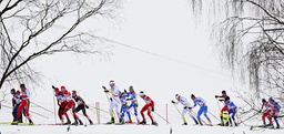 Competitors negotiate a track during the men's cross country 50 km mass start race at the Nordic World Championships in Liberec