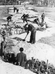 Schlacht um Berlin/Volkssturm/Stellungen - Building defences / Berlin / 1945 -
