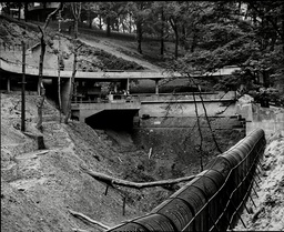 View Of Empty Enclosure Following Escape Of Bears At Dudley Zoo 1937.