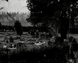 The Scene In St James's Cemetery Bath When The Body Of Miss Ellen Ruddle. The 28 Year Old Drug Addict As Exhumed In The Presence Of Sir Bernard Spilsbury Who Later Conducted A Post Mortem Examination.